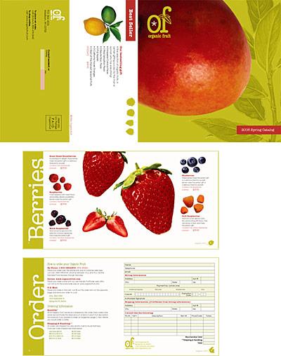 catalog-brochure  (5)
